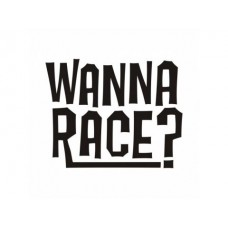 Wanna Race? Sticker